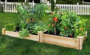 garden-raised-bed-vegetable-garden-delightful-small-vegetable-garden